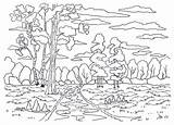 Kleuren Paisagem Malplaatje Paisaje Shrubs Struiken Berk Pijnboom Insenatura Obraz Szablon Atividades Plantilla Arbustos sketch template