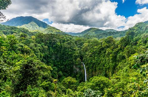 costa rica bans glyphosate   protected wild areas