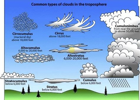 what kind of clouds usually form in a cold front admitted chemtrail contracts with usaf page 16 david
