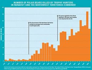 Polar Bear Trophy Hunters in the U.S. Lose Case--But ...