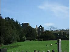 Ruin of Dunganstown Castle from St © Tim Hodgins ccby
