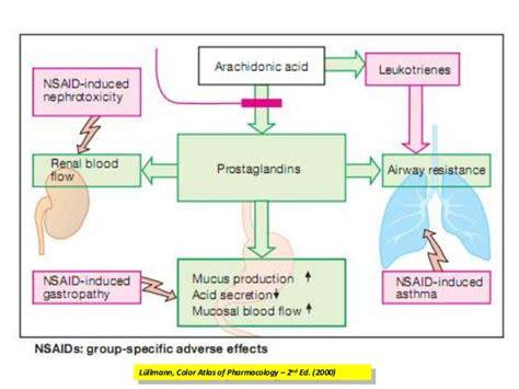 seminar analgesics