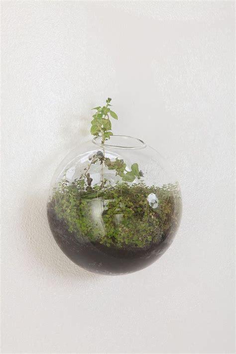 2pcsset Bread Shape Glass Wall Planter Vase Container