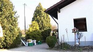Alte Fenster Abdichten : alte fenster abdichten youtube ~ Watch28wear.com Haus und Dekorationen