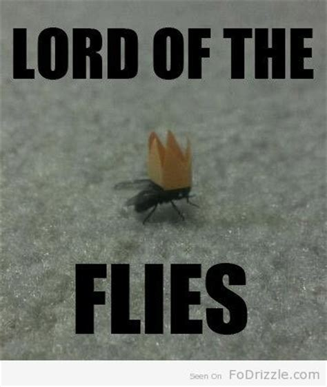 Lord Of The Flies Memes - lord of the flies puns pinterest english the fly and the bug