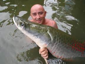 Bass Biggest Fish Ever Caught in the World