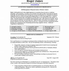 Business Resume Sample Free Resume Template Professional