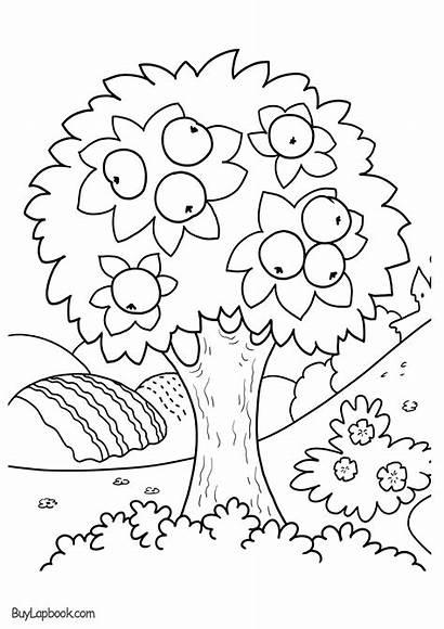 Coloring Tree Apple Printable Worksheets Kindergarten Seasons