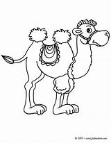 Coloring Chameau Camel Dessin Imprimer Station Coloriage Animaux Pages Kirigami Dumbo Camels Outlines �a Từ Lưu sketch template