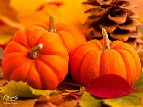Desktop Fall Backgrounds Pumpkins by Fall Pumpkin Wallpaper Found The Desktop Wallpaper