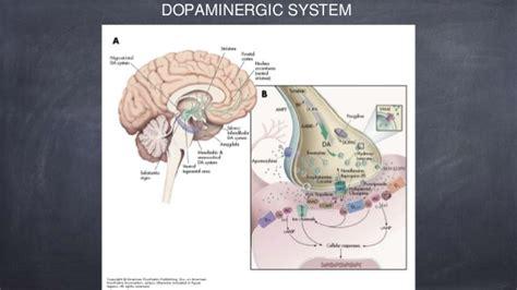 psychopharmacology va