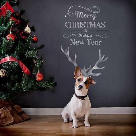 merry christmas and happy new year christmas cards cards and dog