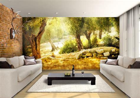olive trees custom wallpaper mural print  jw shutterstock