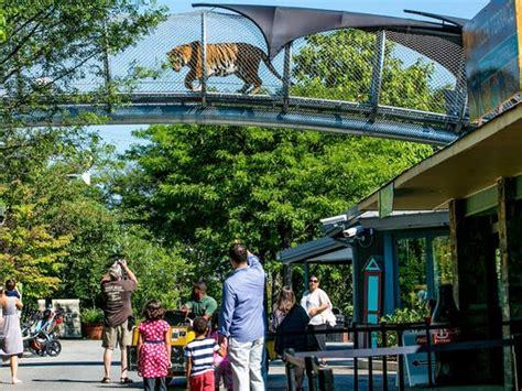 zoo philadelphia exhibit cat crossing detroit readers visit 10best choice travel job awards winners fusco usatoday won title reveals announced
