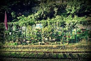 Les jardins du ruisseau jardinons ensemble for Jardin du ruisseau