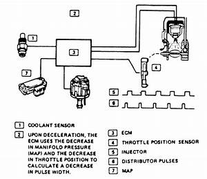 Autosportswiring  94 Ford Ranger Engine Wiring Diagram