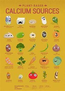 Vegan Plant Based Calcium Sources Vegan Vegetarian