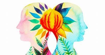 Chakra Herbs Each Cleansing Ruangvaree Benjavisa Shutterstock