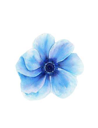 blue watercolor fl