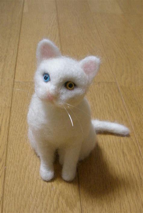 白 猫 み ゃ あこ ブログ