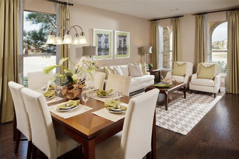 Living Room And Dining Room by Livingroom Apartment Living Room Dining Combo Decorating