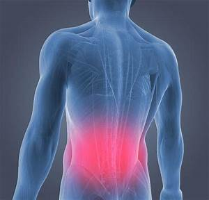 Lower Back Pain Causes  U0026 Relief