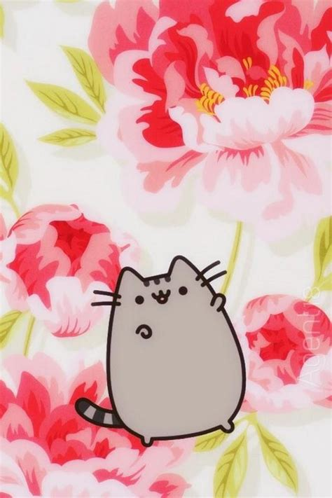 Background Home Screen Wallpaper Cat by Pusheen Cat Wallpaper Hd For Android Apk