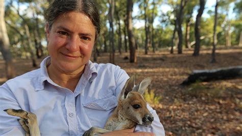 S E Next On Sex In The Wild Kangaroos Sex In The