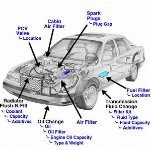 Fuel Filter Location  Where Is The Fuel Filter Located On
