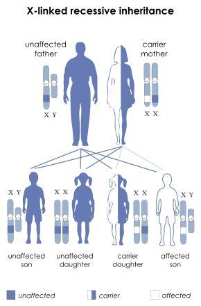 color blindness genetics color blindness