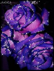 Animations. Flores, Flowers. Animated Flowers. Roses ...