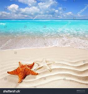 Caribbean Starfish Over Wavy White Sand Stock Photo ...