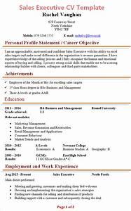 sales executive cv template 1 With sales cv template uk