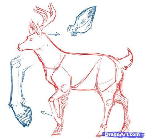 deer drawing ideas  pinterest deer art deer