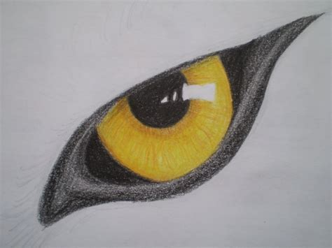 Wolf's Eye By Mustavuona On Deviantart