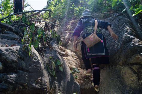 Easy Guide To Sapa Mountain Trekking