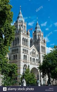 Natural History Museum Stock Photos & Natural History ...