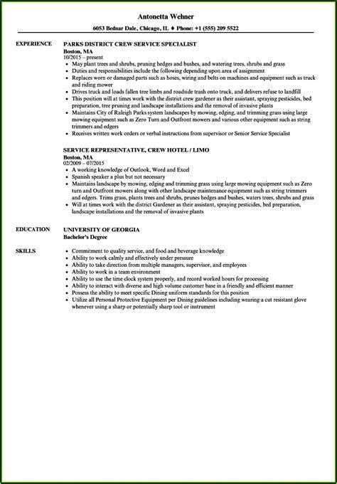 tree trimmer duties resume resume resume examples