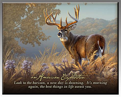 Unique Deer Hunting Sayings At Nb79 Advancedmassagebysara