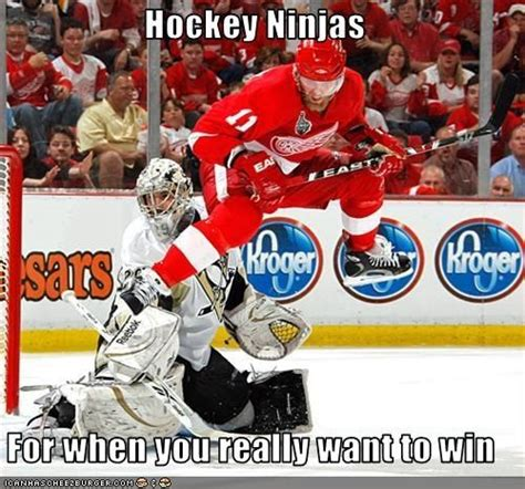 Nhl Meme - 748 best hockey images on pinterest ice hockey hockey