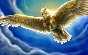 Heavenly White Horse With Wings Pegasus Fantasy Sky Blue