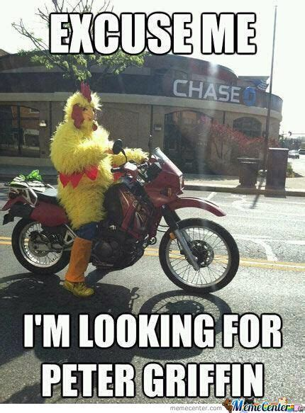 Funny Chicken Memes - funny chicken meme www pixshark com images galleries with a bite