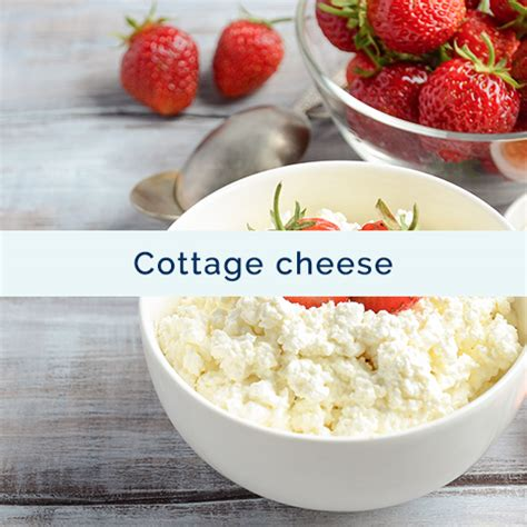 Cottage Cheese Ingredients by Cottage Cheese Agropur Ingredients