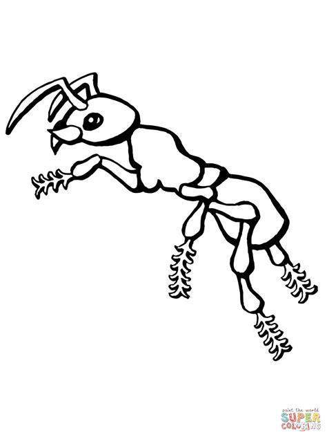 Kolorowanka Mrówka   Kolorowanki dla dzieci do druku