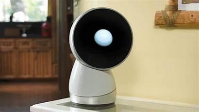 Jibo Robot Personal Assistant Entrepreneur Social Funding