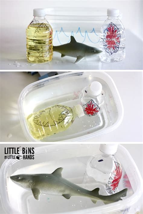 sharks float  bins   hands