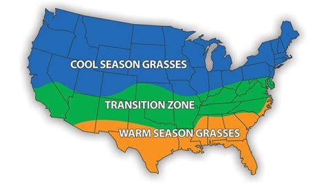 zone transition season cool grass fescue bermuda sod celebration lawn between warm seeding difference grasses lawns sun