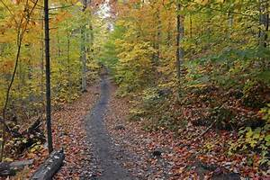 How to Find Hiking Trails Near Me - Ranger Mac