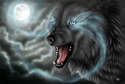 Wolf Cool Backgrounds Wallpapers Desktop Computer Moon