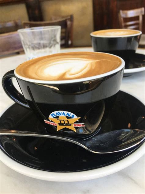 Today we are visiting wellington and if you're passing by this beautiful windy city a visit to the famous havana coffee roastery is an absolute must! Wellington New Zealand: The Perfect City Break   We Are Travel Girls